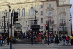Picadilly (3)