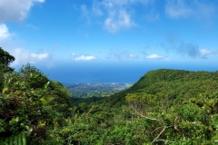 GUADELOUPE-SOUFRIERE (17)