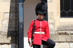 Tower of London (8)